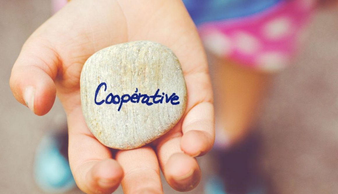 Être entrepreneur salarié dans une coopérative, CAE IMPULS'IONS